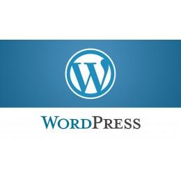 WordPress程式安裝 外掛安裝 WP安裝讓專業的來省下您許多寶貴時間 讓程式更安全讓功能更好用 酌收一次性服務費用